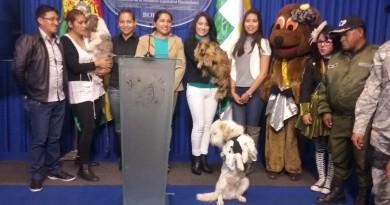 campaña de canes
