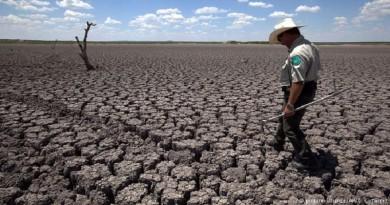 2016 fue el año más caluroso de la historia
