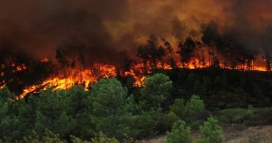 incendios-forestales