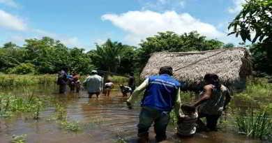 Seguro Agrario reporta 19.200 hectáreas como siniestradas por desastres naturales