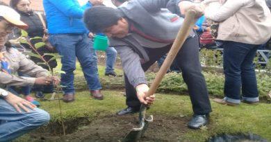 Morales planta el árbol 100 mil en La Paz y urge el cuidado del medio ambiente