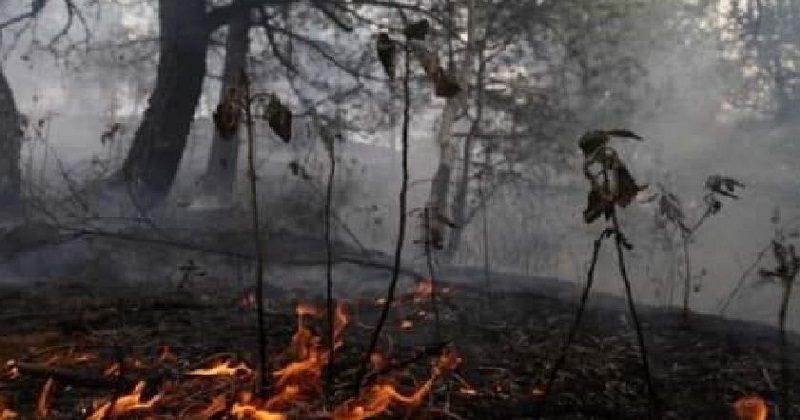 Quintana: Empieza a ser controlado el fuego en la Chiquitania y bajan los focos de calor