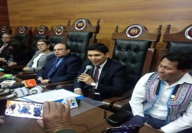 TCP aprueba por unanimidad prórroga de mandato de Jeanine Añez y la Asamblea Legislativa