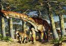 Es oficial: el titanosaurio más antiguo del mundo es argentino